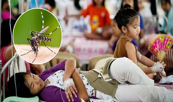 ফিলিপাইনে ৬২২ মৃত্যু, ডেঙ্গুকে জাতীয় মহামারি ঘোষণা
