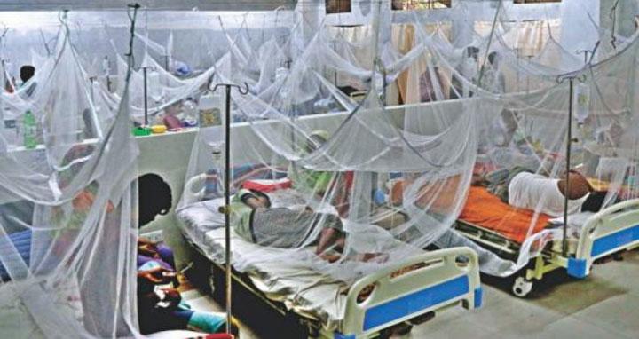 ডেঙ্গু আক্রান্ত হয়ে আরও ২২৯ জন হাসপাতালে