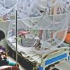 ডেঙ্গু আক্রান্ত হয়ে আরও ৩০৬ জন হাসপাতালে