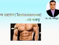 পুরুষ হরমোন (Testosterone) এর গুরুত্ব