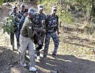 ভারতে মাওবাদীদের হামলায় ৫ পুলিশ নিহত