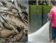 রংপুর শহরের সড়কে মাছ ধরার উৎসব!