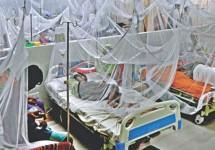ডেঙ্গু আক্রান্ত হয়ে আরও ২২১ রোগী হাসপাতালে