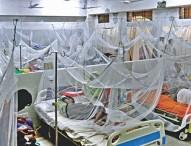 ডেঙ্গু আক্রান্ত হয়ে আরও ২৪২ জন হাসপাতালে : মৃত্যু ২