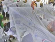 ডেঙ্গু আক্রান্ত হয়ে আরও ২২৪ জন হাসপাতালে ভীর্ত